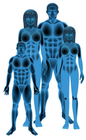 Group of empty human body anatomy illustration