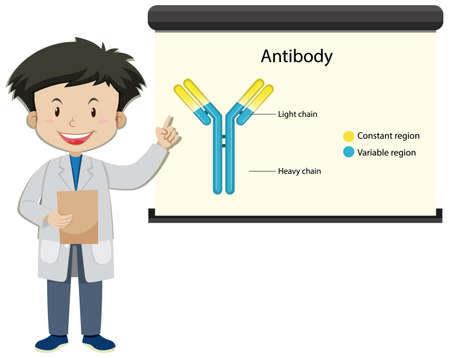A doctor with Antibody on projector screen in cartoon style illustration