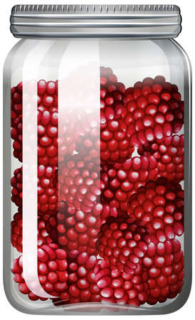 Raspberries in the glass jar illustration Vecteurs