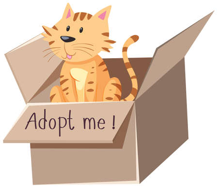 Cute cat or kitten in the box with adopt me text on the box cartoon isolated illustration Ilustracja