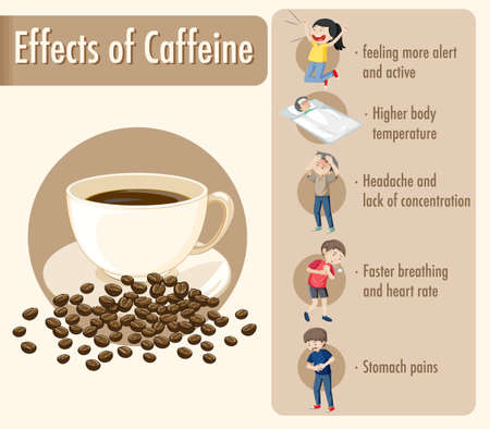 Effects of caffeine information infographic illustration