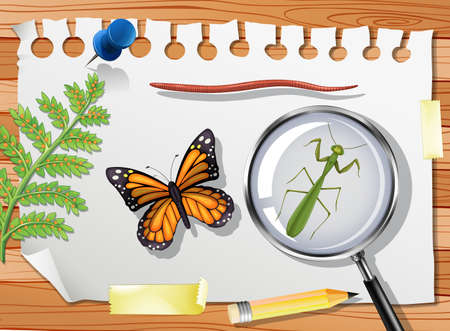 Butterfly with mantis and magnifying glass on table close up illustration