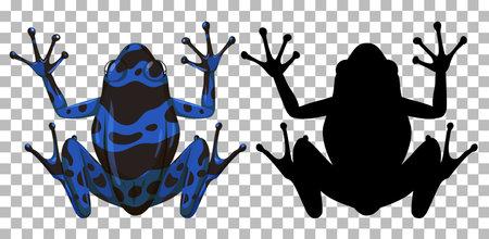 Blue poison dart frog with its silhouette on transparent background illustration Vektorgrafik