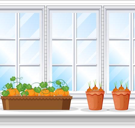 Vegetable plants with window background scene illustration