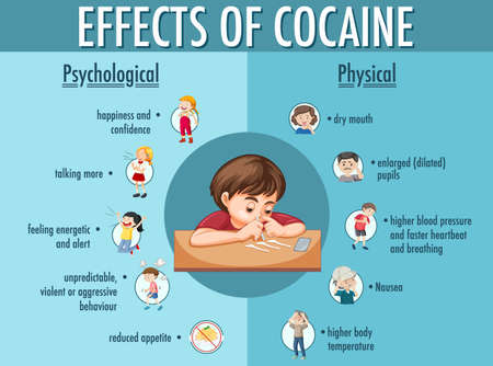 Effects of cocaine information infographic illustration