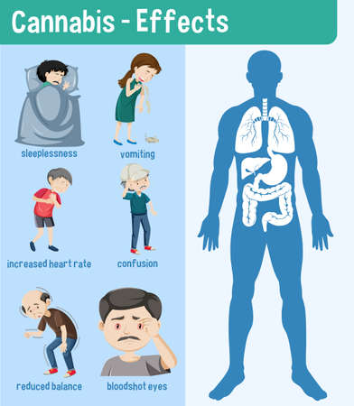 Health effects of Cannabis Infographic illustration