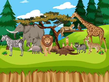 Group of wild african animal in the zoo scene illustration