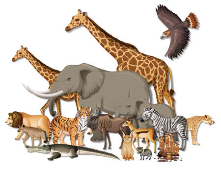 Group of wild African animals on white background illustration