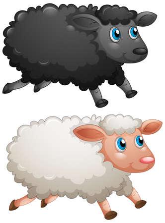 Black sheep and white sheep on white background illustration