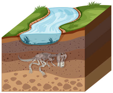 Soil layers with dinosaur fossil illustration
