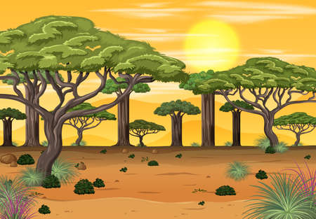 African forest landscape at sunset time illustration 向量圖像