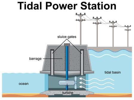 Diagram showing Tidal Power Station illustration