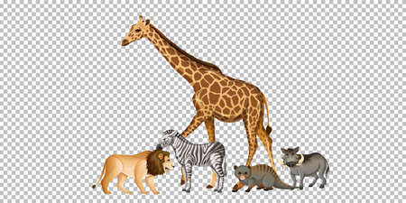 Group of wild african animal on transparent background illustration Stock Illustratie