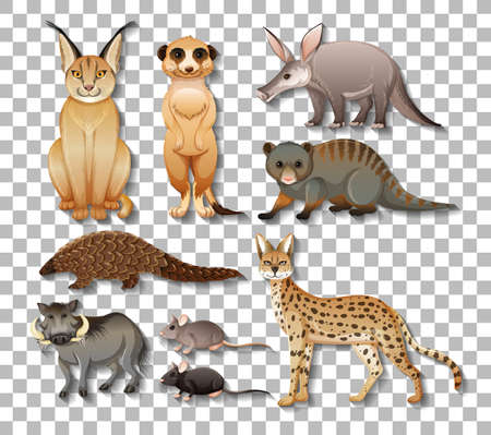 Set of isolated wild african animals on transparent background illustration