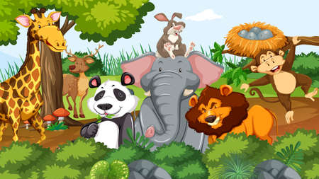 Wild animals in the jungle illustration