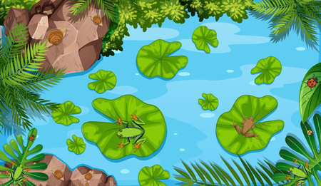 Aerial scene with frogs and lotus leaves in the pond illustration Stock Illustratie