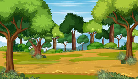 Nature outdoor forest background illustration