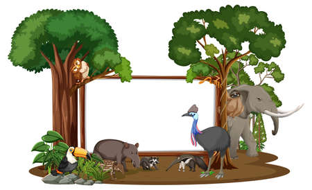 Empty banner with wild animals and rainforest trees on white background illustration