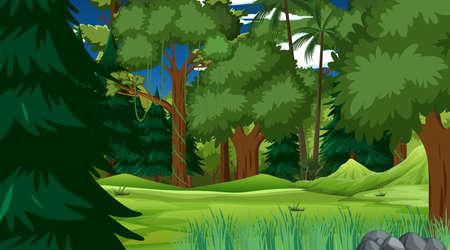 Rainforest or tropical forest at daytime scene illustration Vektorové ilustrace