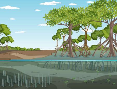 Mangrove forest landscape scene at daytime illustration