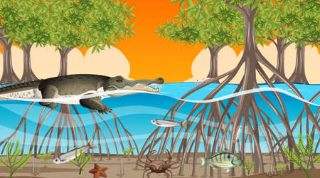 Animals live in Mangrove forest at sunset time scene illustration