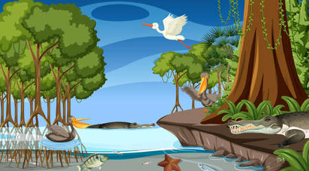 Animals live in mangrove forest at night scene illustration