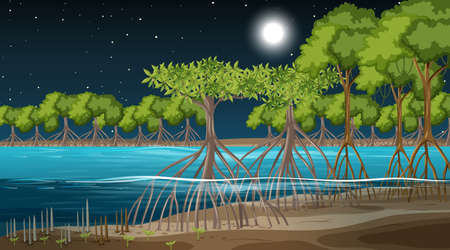 Mangrove forest landscape scene at night illustration