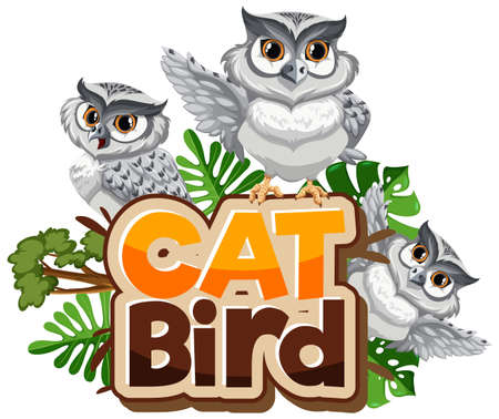 Many white owls cartoon character with Cat Bird font banner isolated illustration