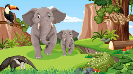 Elephant family with other wild animals in forest scene illustration