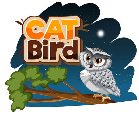 White owl cartoon character at night scene with Cat Bird font banner isolated illustration