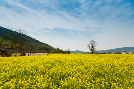 convective: Hong village in Anhui countryside