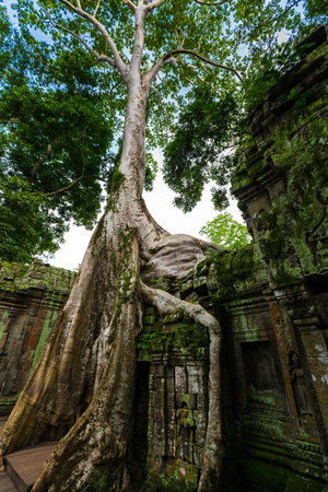 Kampuchea Siem Reap Angkor scenery Stock Photo