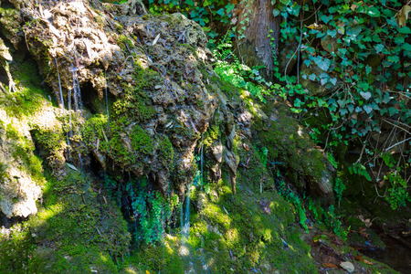 to trickle: Nature scenery of Fethiye Lycian, Turkey