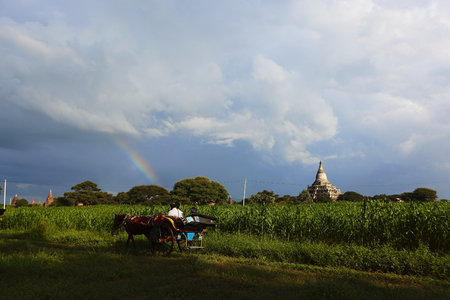 Bagan after the rain