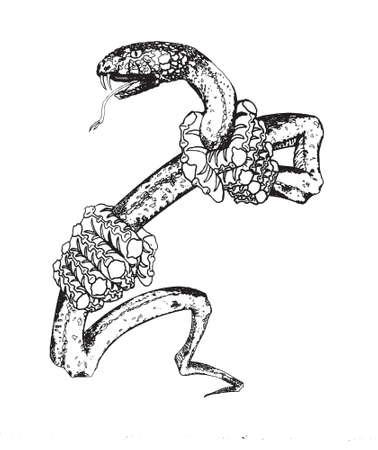 entered: Serpent Tatoo