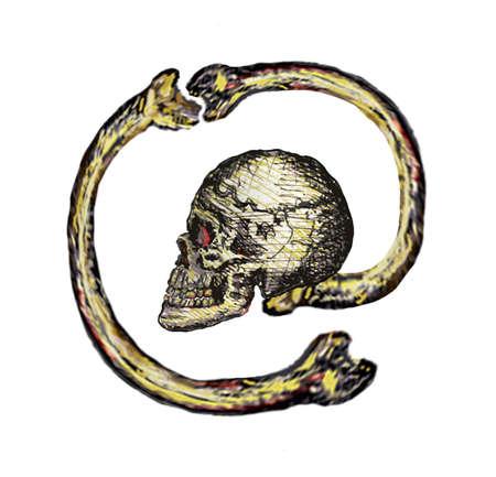 Skull arobase Stock Vector - 17128186