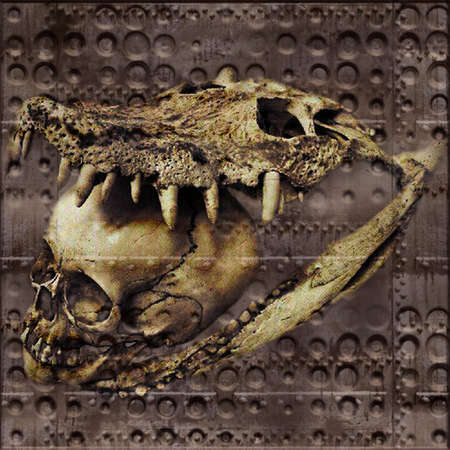 mythologie: Crocodil Skull Illustration