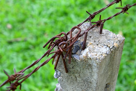 tine: Barbed wire on concrete pillars