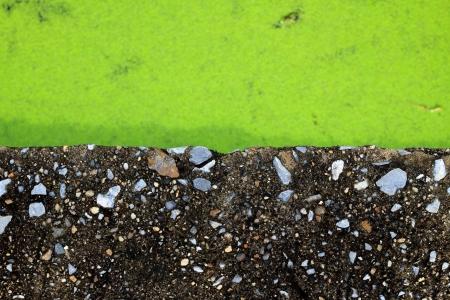 duckweed: concrete bridge and green duckweed  Stock Photo