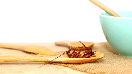 cockroach in wooden spoon with cup of soup