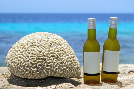Two wine bottles on the tropical beach