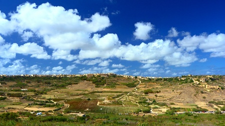 Sunny landscape with vineyard, countryside on the Island of Gozo. Maltese agriculture. Mediterranean sunny day with white clouds and deep blue sky.