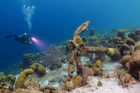 Scuba diver with light, anchor and healthy coral reef underwater in tropical sea.