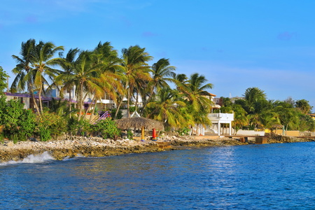 Tropical coastline with palm trees, pebble beach and small houses. Stok Fotoğraf