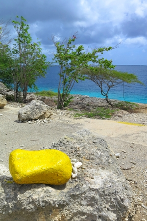 Yellow bright stone on the rocky tropical exotic beach with wild bush.