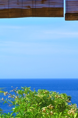 Tropical ocean view from terrace. Calm blue empty sea and green exotic tree. 免版税图像 - 98970810