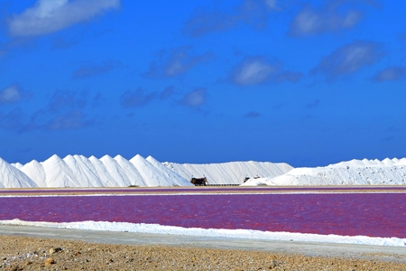 White salt hills on the tropical salt plantation.