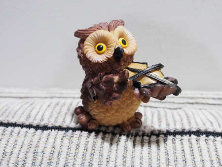 Little Owl Stock Photo - 26333256