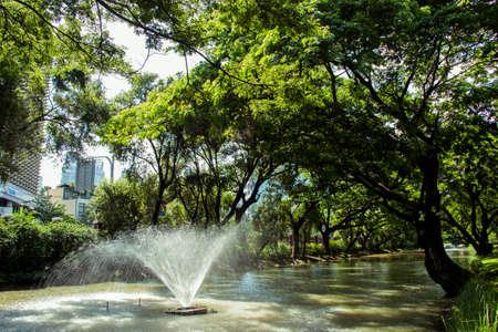 beauty fountain: fountain in the park