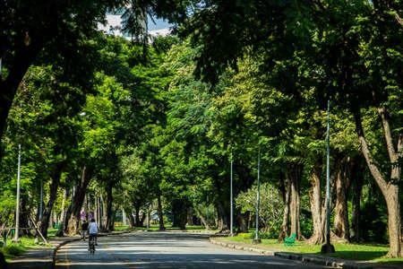 bowery: Bowery park